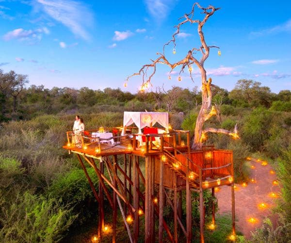 Aardvark Safaris - Chalkley's Tree House, South Africa