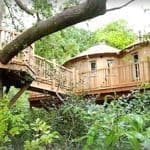 The-Treehouse-at-Harptree-Court-near-Bath